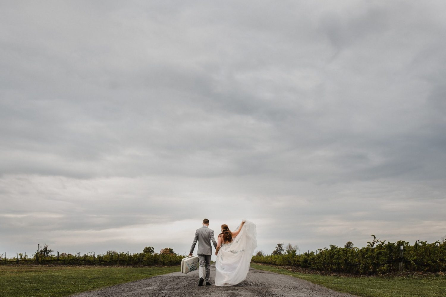 winery wedding, prince edward county wedding photographer, picton photographer